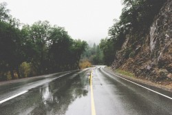 road-curve-bend-rainy